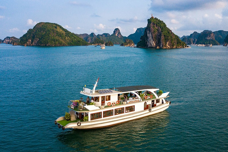 Wonderbay Cruise - Luxury 01 day Halong